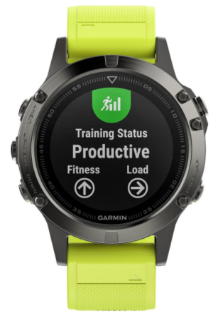 Garmin Fenix5 Gray Optic Yellow